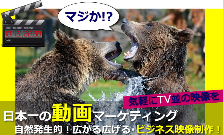 日本一の動画マーケティングで広げる広がる!プロによる、ビジネス動画制作はお任せ下さい!